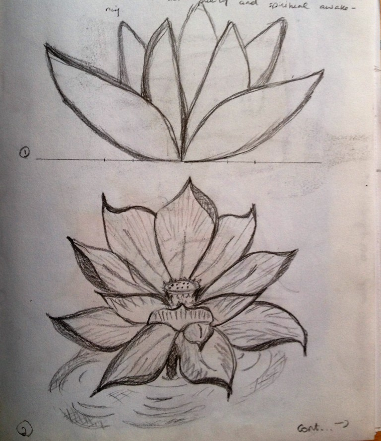 Lotus flower sketches