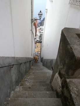 Steep steps in Positano