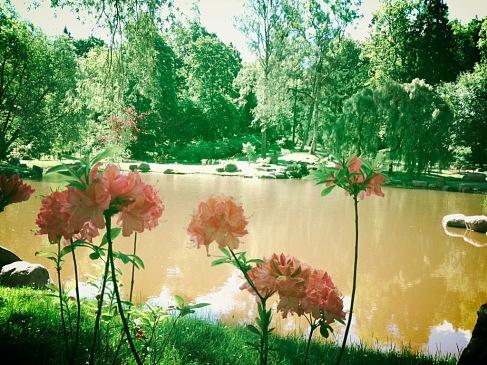 Tallinn, Japanese Garden, Kariorg Park