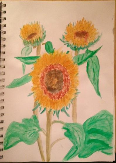 Sunflowers sketch