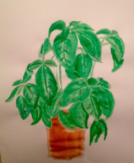 Basil sketch in watercolours