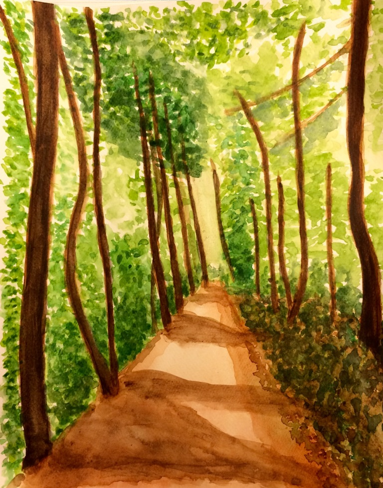A walk in the woods, watercolour